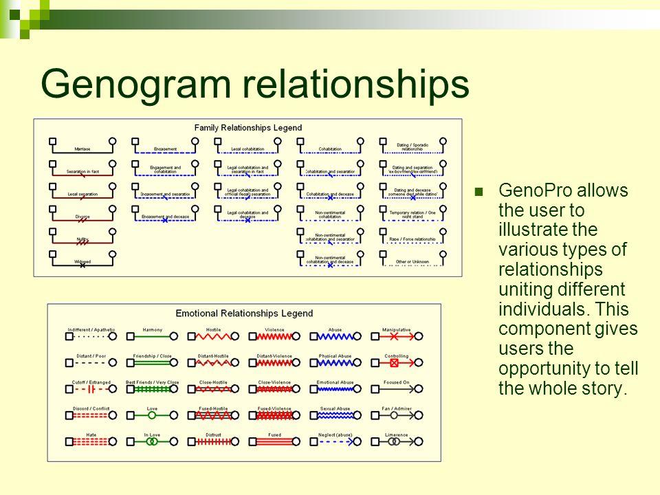 genogram narrative Wilkinson paige wilkinson drpeterson individual and family relationships 18 june 2011 genogram paper: creating a genogram is one of the genogram narrative.