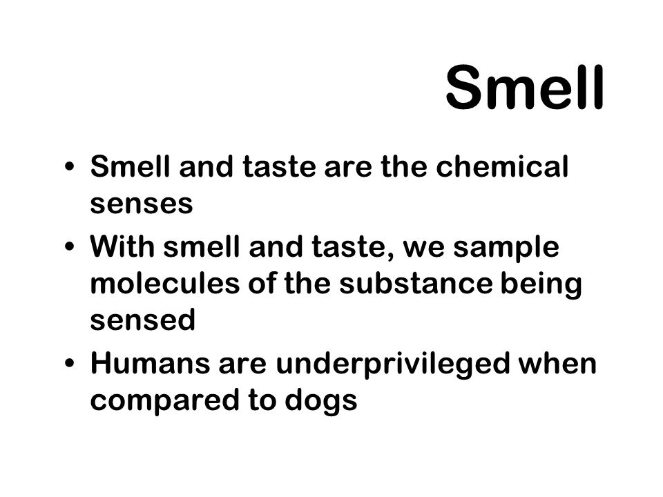 Smell Smell and taste are the chemical senses