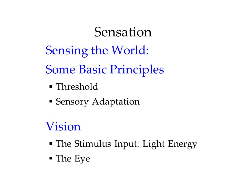 Sensation Sensing the World: Some Basic Principles Vision Threshold