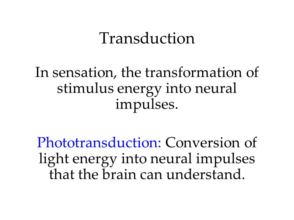 Transduction In sensation, the transformation of stimulus energy into neural impulses.