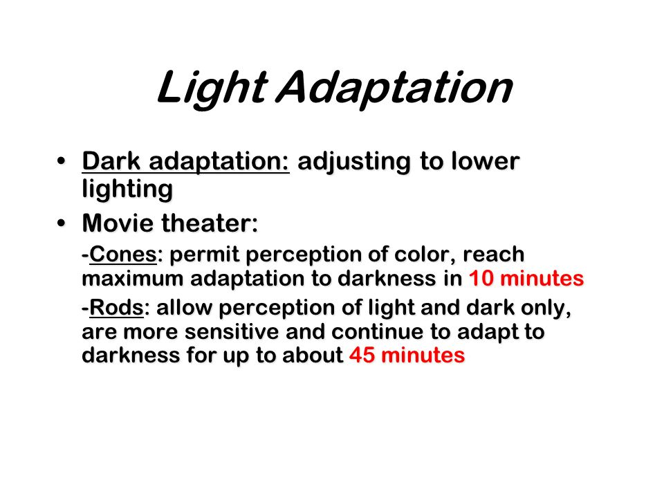 Light Adaptation Dark adaptation: adjusting to lower lighting
