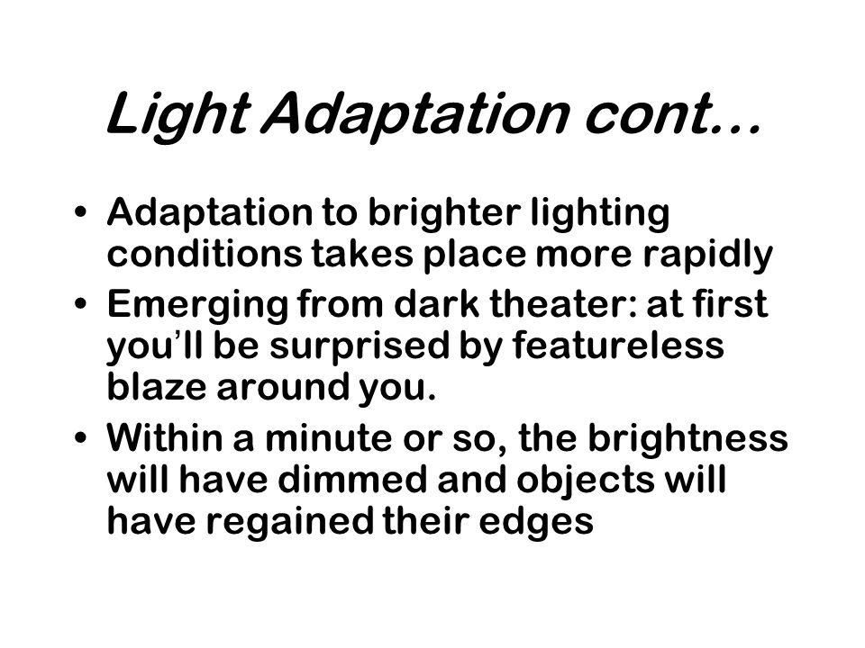 Light Adaptation cont…