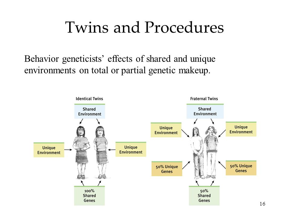 Twins and Procedures Behavior geneticists' effects of shared and unique environments on total or partial genetic makeup.