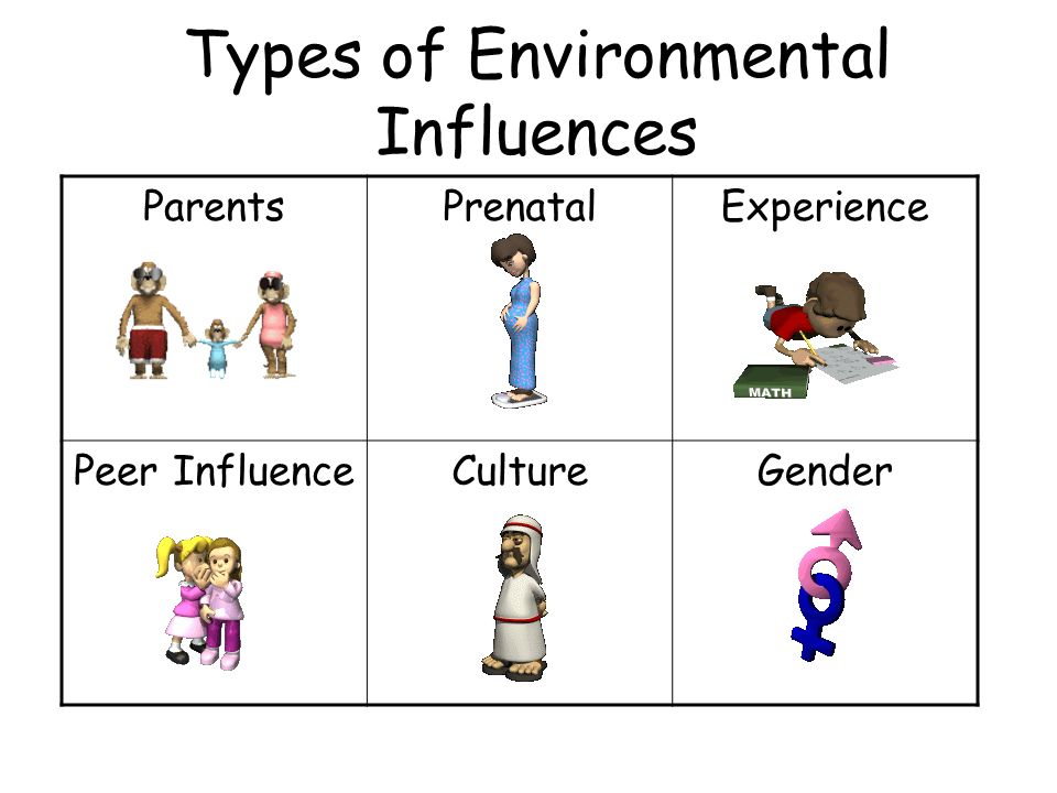 Types of Environmental Influences