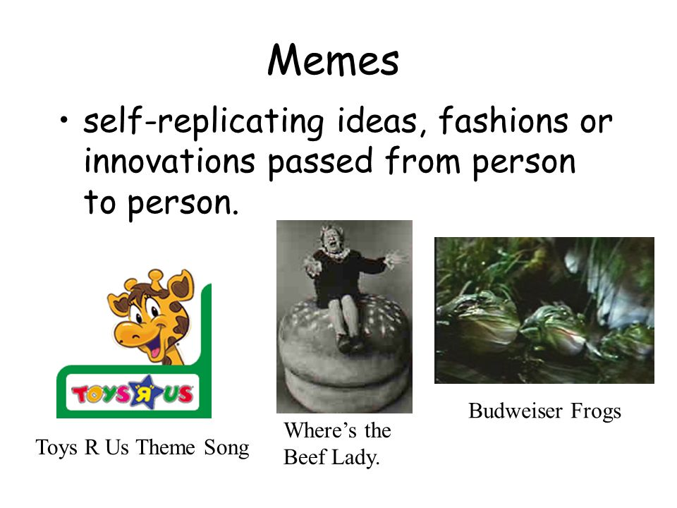 Memes self-replicating ideas, fashions or innovations passed from person to person. Budweiser Frogs.