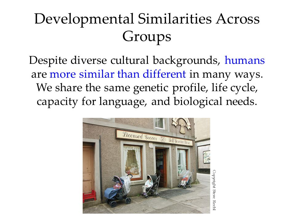 Developmental Similarities Across Groups