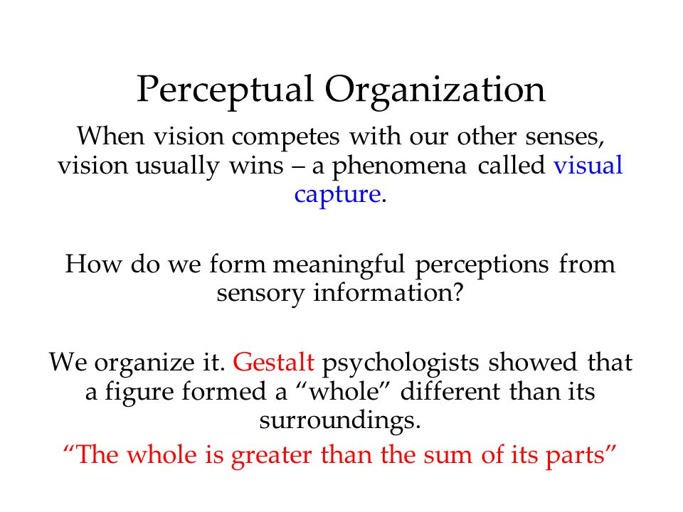 perception chapter ppt