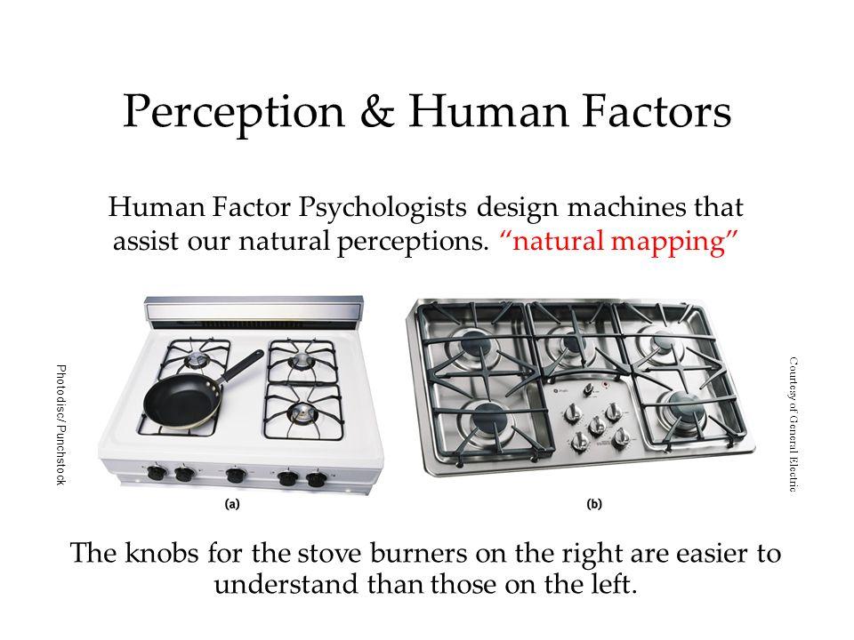 Perception & Human Factors