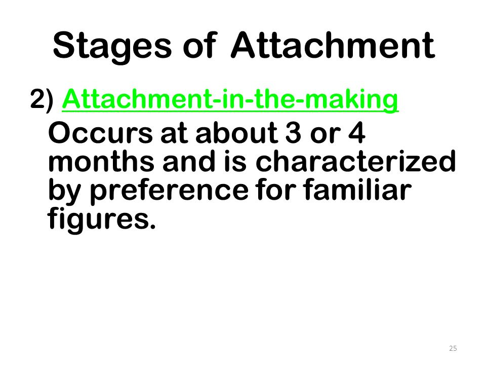 Stages of Attachment 2) Attachment-in-the-making.