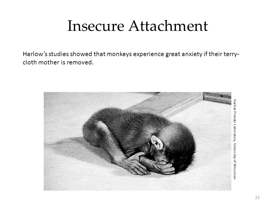 Insecure Attachment Harlow's studies showed that monkeys experience great anxiety if their terry-cloth mother is removed.