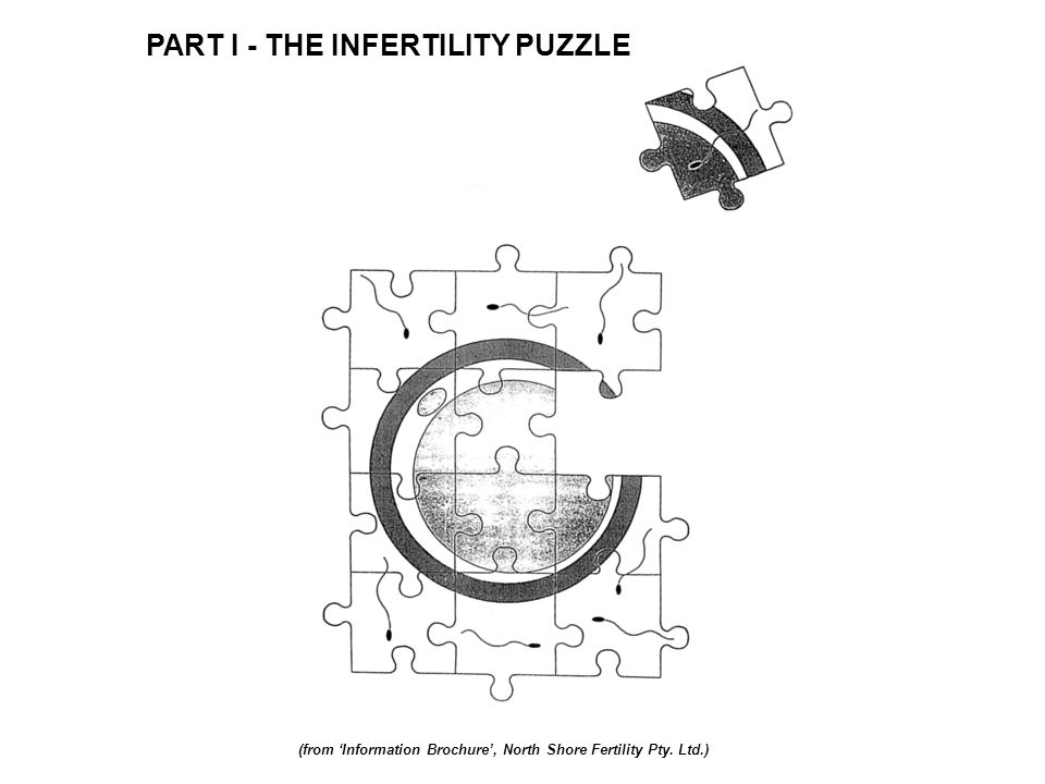 PART I - THE INFERTILITY PUZZLE