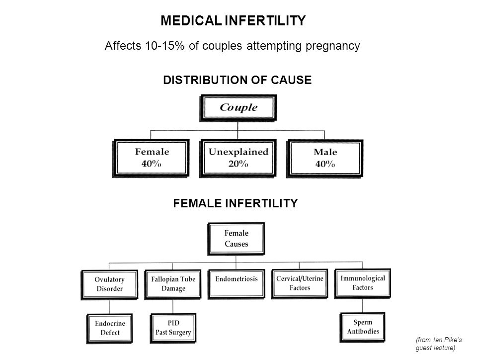 MEDICAL INFERTILITY Affects 10-15% of couples attempting pregnancy