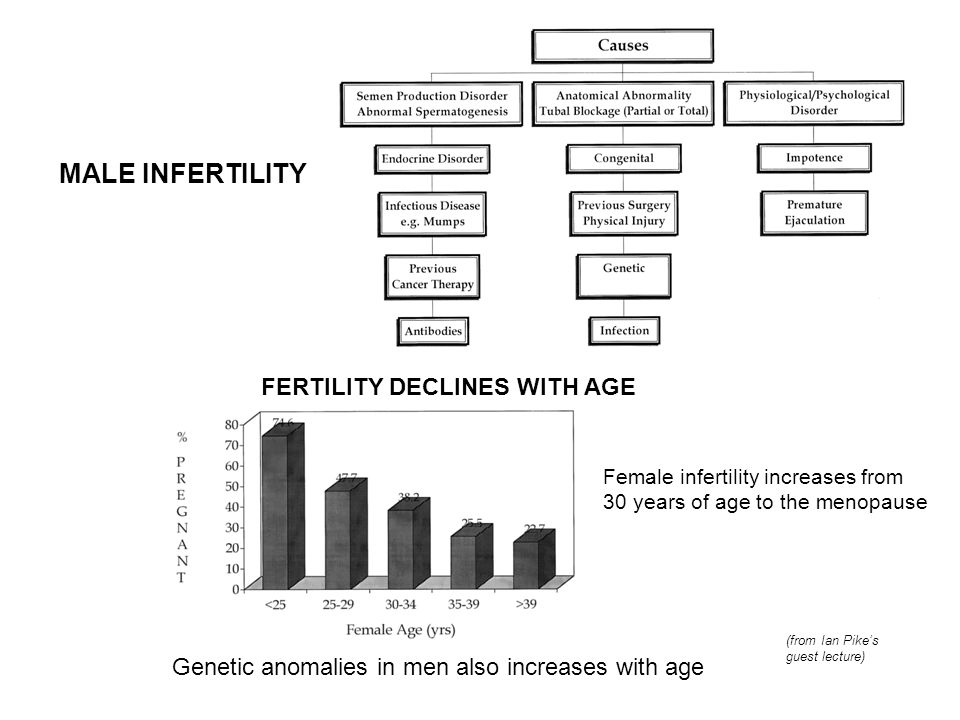 MALE INFERTILITY FERTILITY DECLINES WITH AGE