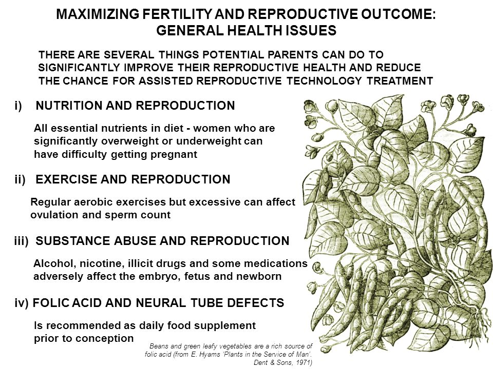 MAXIMIZING FERTILITY AND REPRODUCTIVE OUTCOME: GENERAL HEALTH ISSUES
