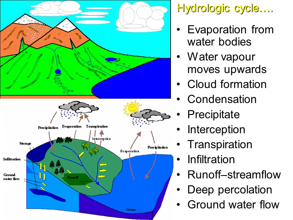 Hydrologic Cycle Evaporation From Water Bodies Vapour Moves Upwards Cloud Formation