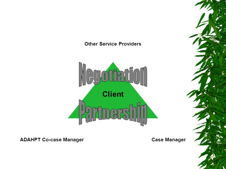 ADAHPT Co-case Manager Other Service Providers
