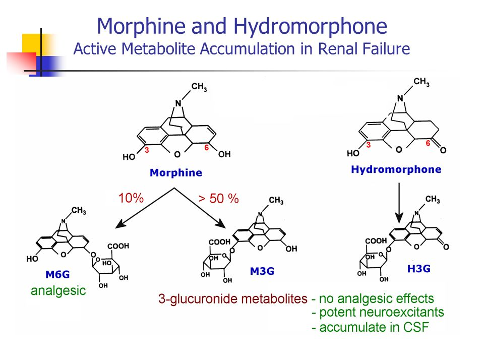 Morphine and Hydromorphone Active Metabolite Accumulation in Renal Failure