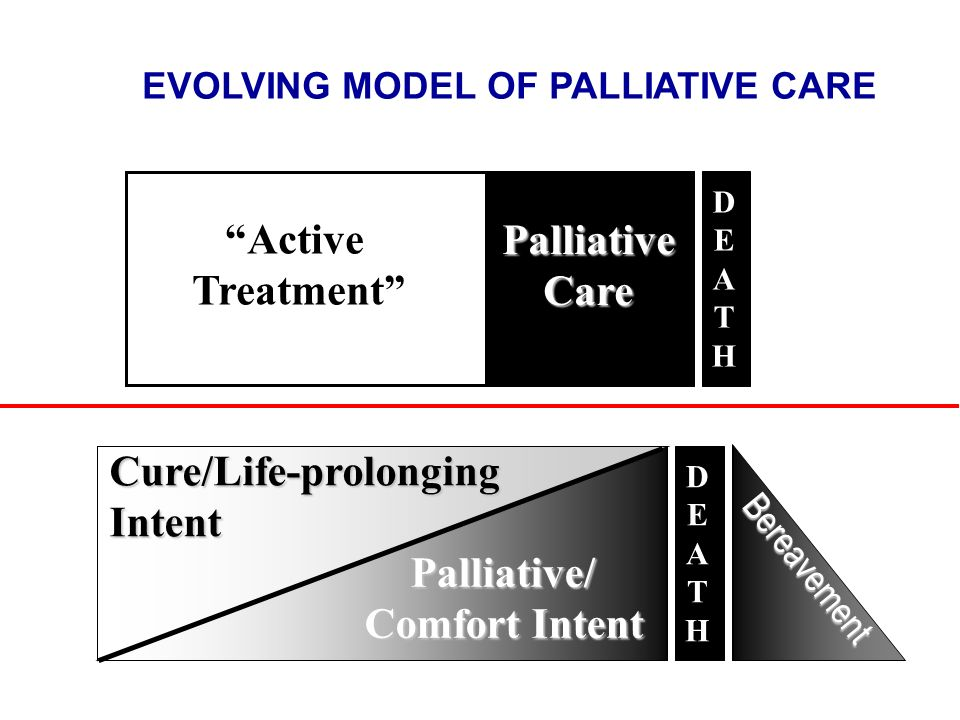 EVOLVING MODEL OF PALLIATIVE CARE