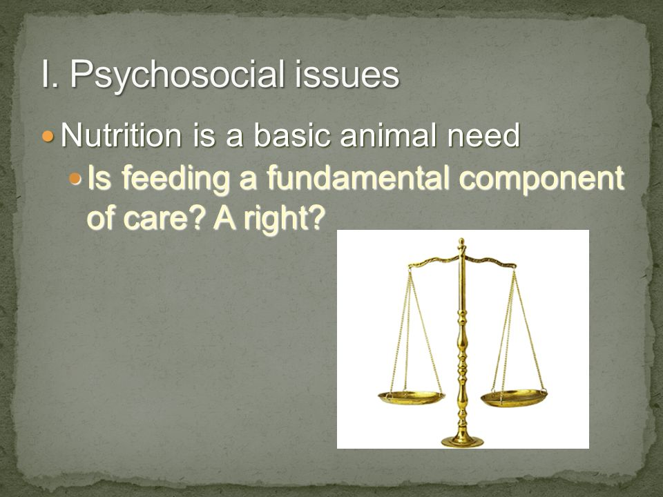 I. Psychosocial issues Nutrition is a basic animal need