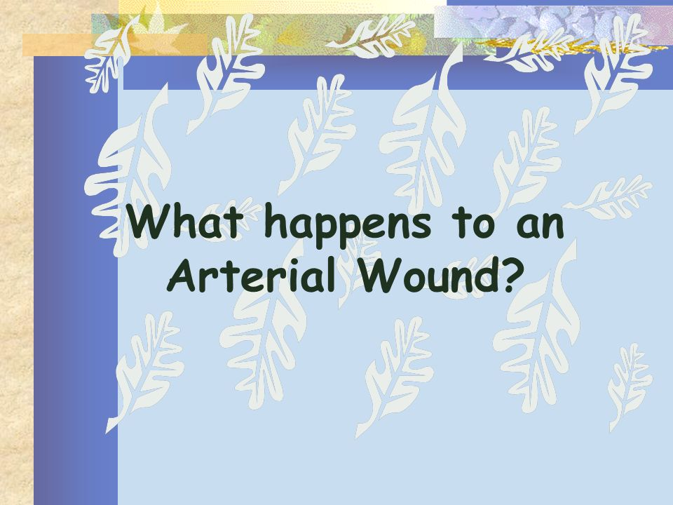 What happens to an Arterial Wound