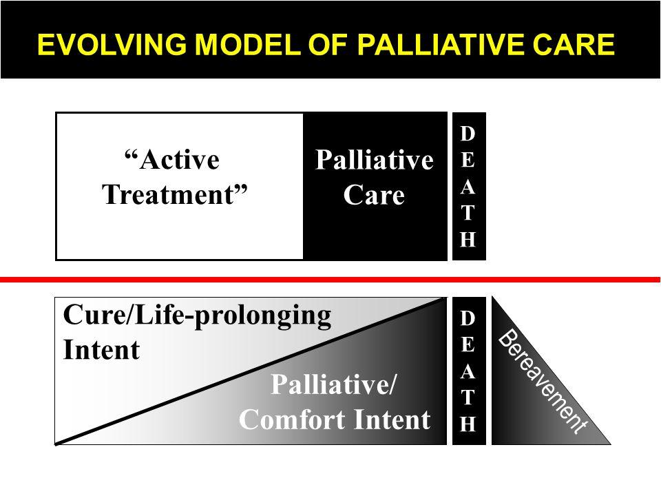 Active Treatment Palliative Care Palliative/ Comfort Intent