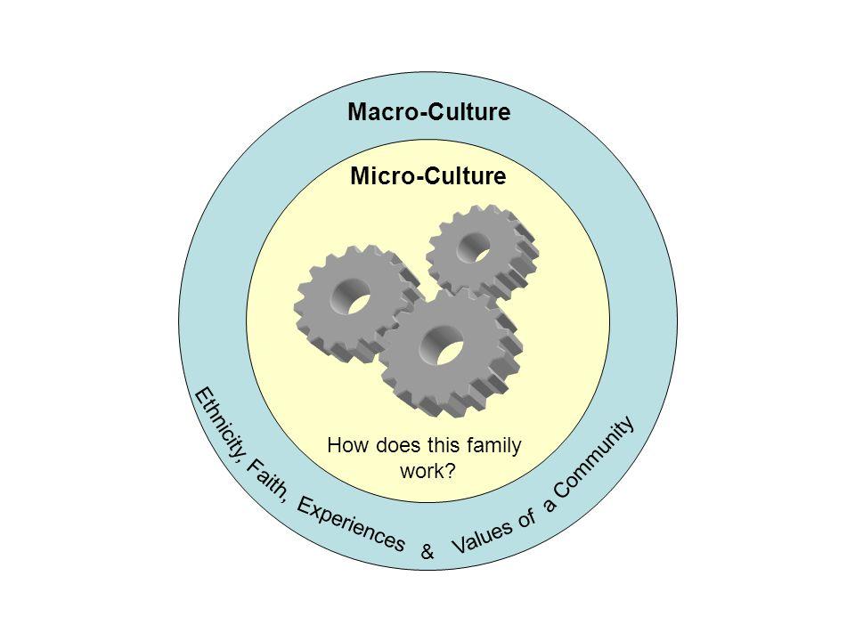 Macro-Culture Micro-Culture Ethnicity, a Community
