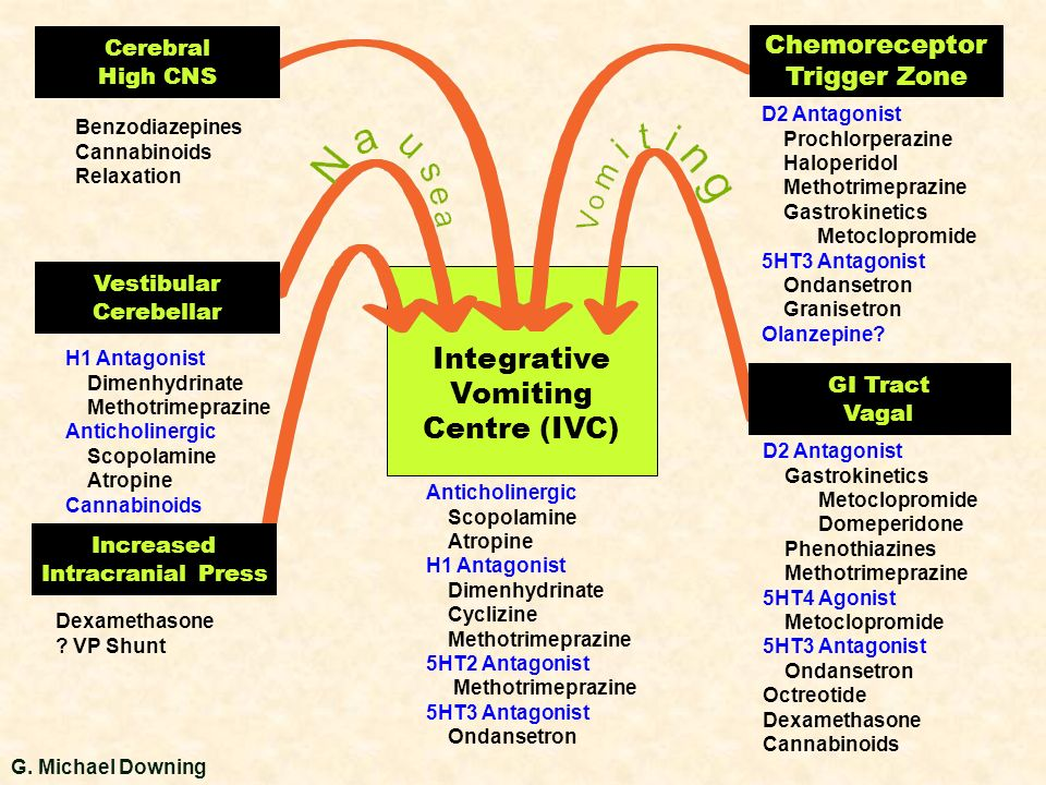 Integrative Vomiting Centre (IVC) Chemoreceptor Trigger Zone Cerebral