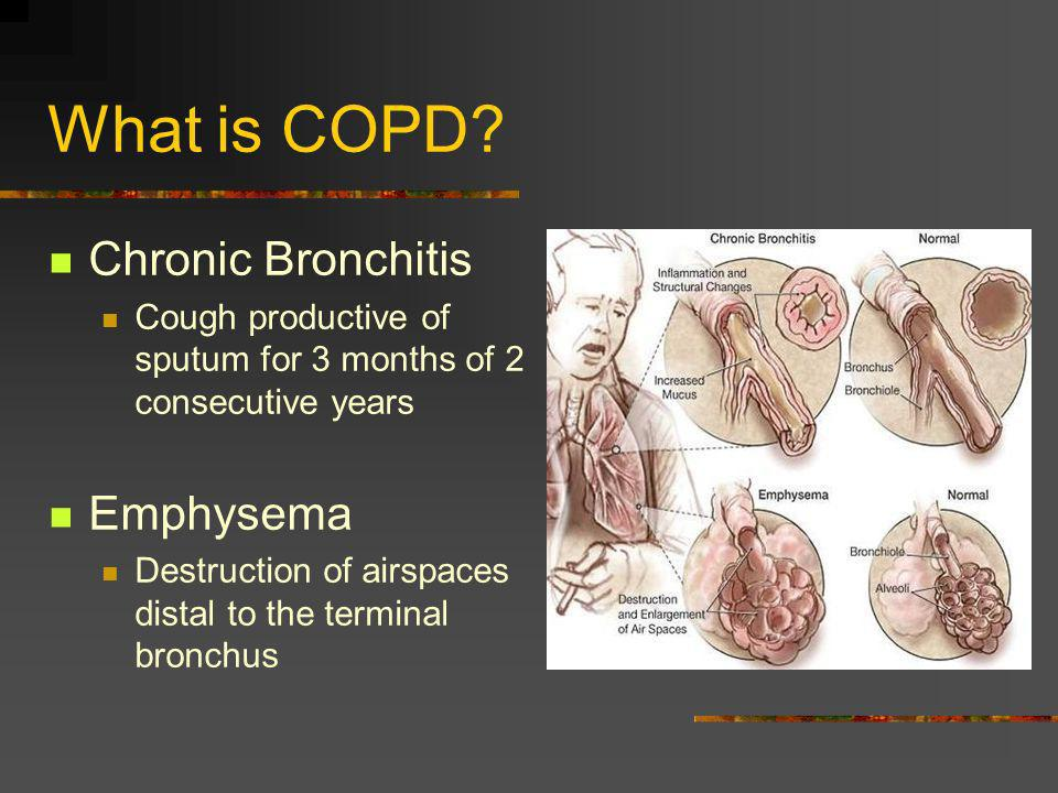 What is COPD Chronic Bronchitis Emphysema