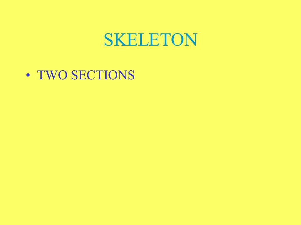 SKELETON TWO SECTIONS