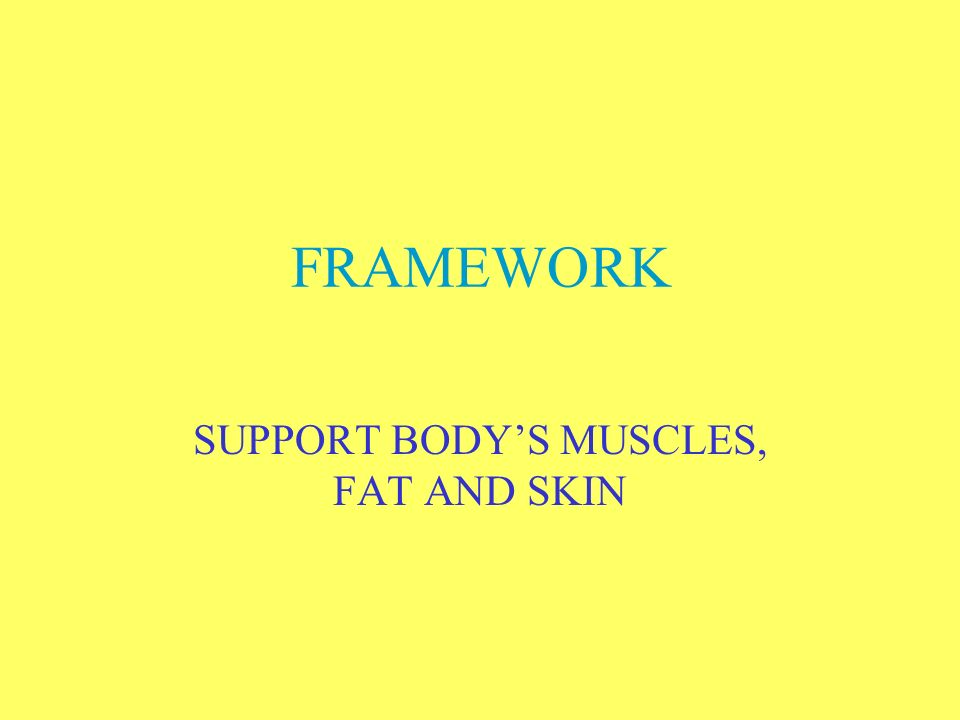 SUPPORT BODY'S MUSCLES, FAT AND SKIN