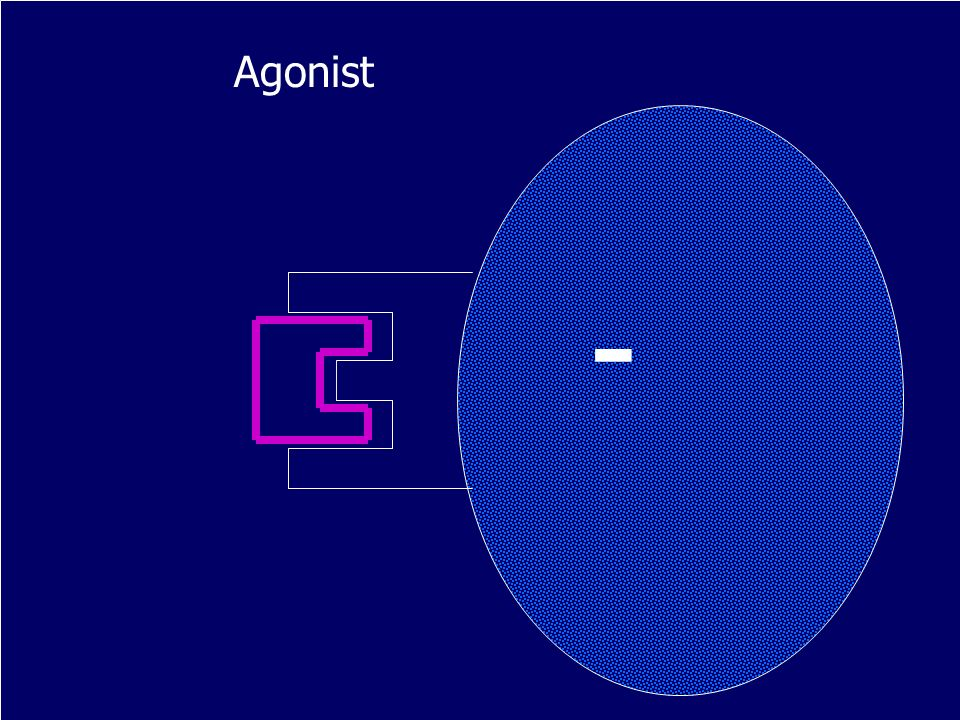 Agonist -