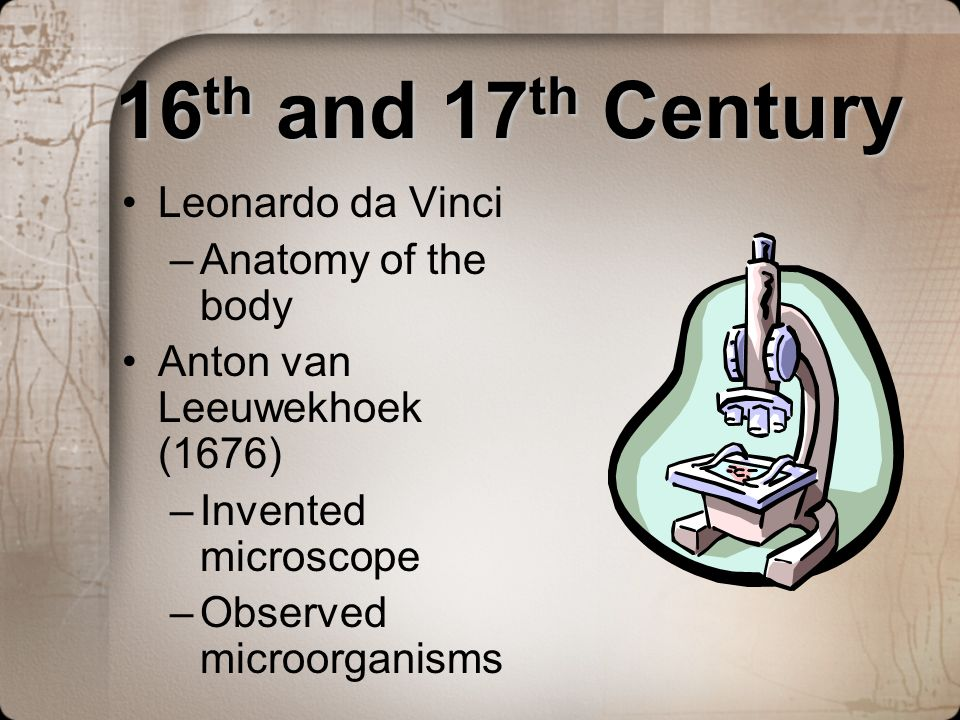 16th and 17th Century Leonardo da Vinci Anatomy of the body