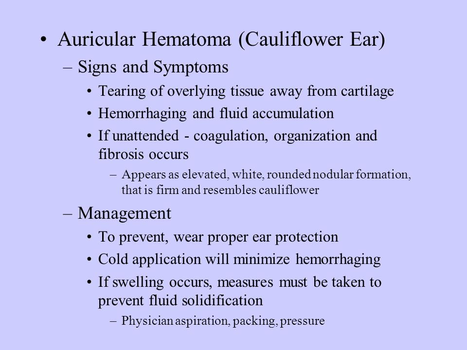 Auricular Hematoma (Cauliflower Ear)