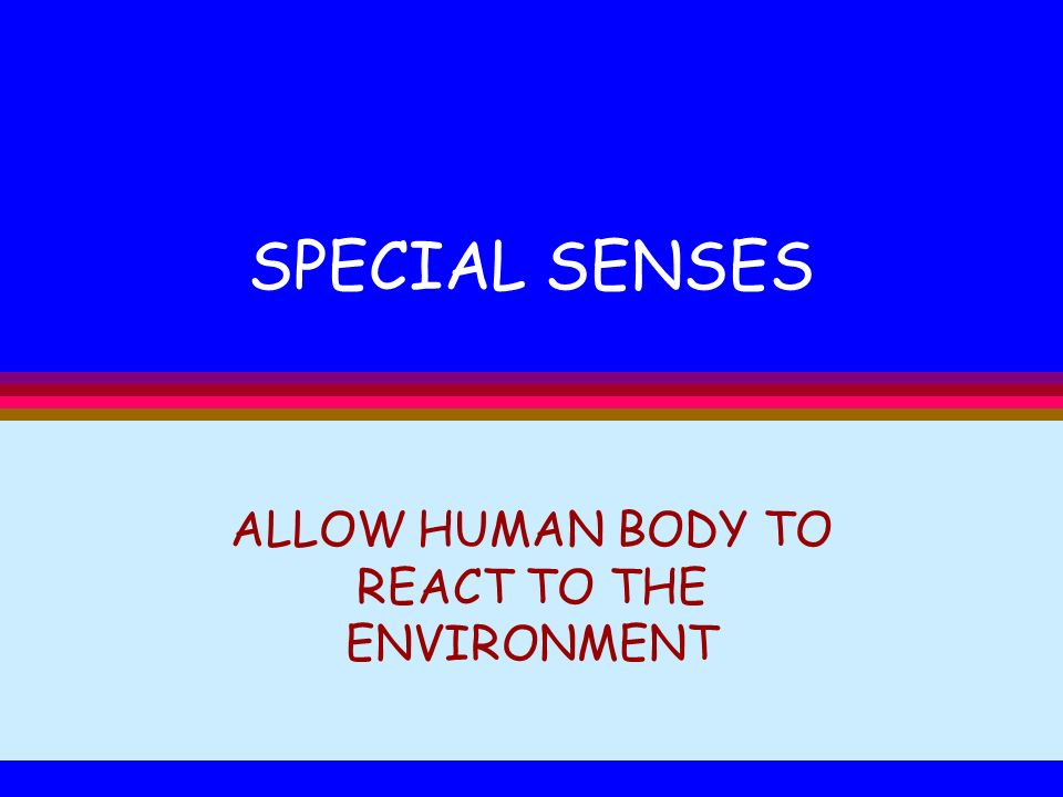 ALLOW HUMAN BODY TO REACT TO THE ENVIRONMENT