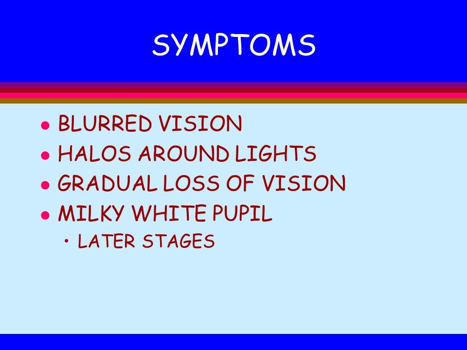 SYMPTOMS BLURRED VISION HALOS AROUND LIGHTS GRADUAL LOSS OF VISION