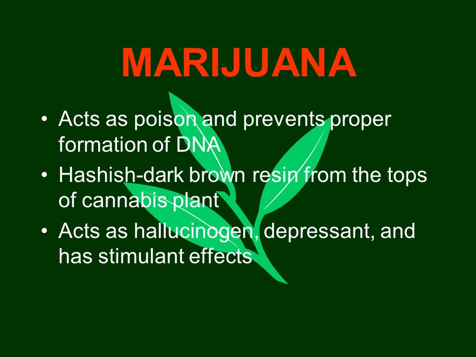 MARIJUANA Acts as poison and prevents proper formation of DNA