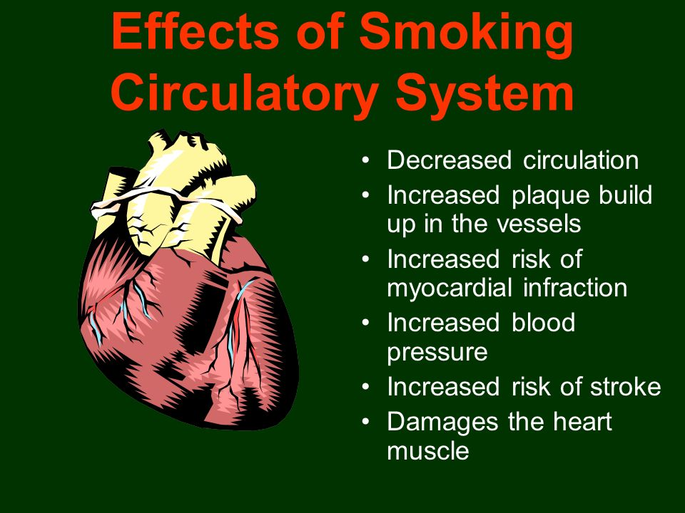 Effects of Smoking Circulatory System