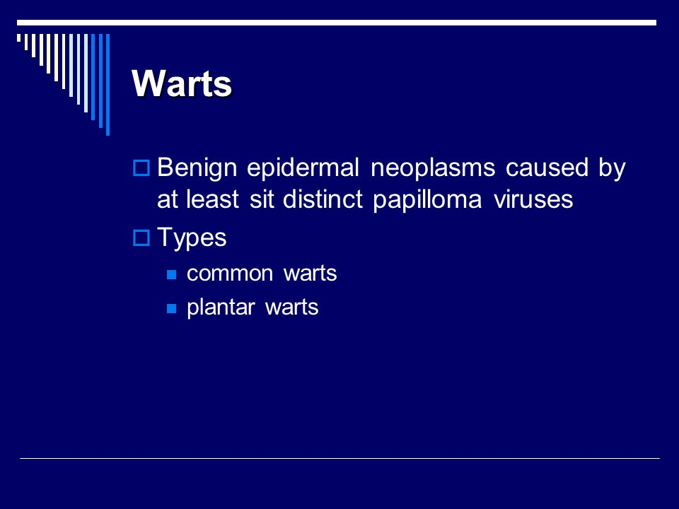 Warts Benign epidermal neoplasms caused by at least sit distinct papilloma viruses. Types. common warts.