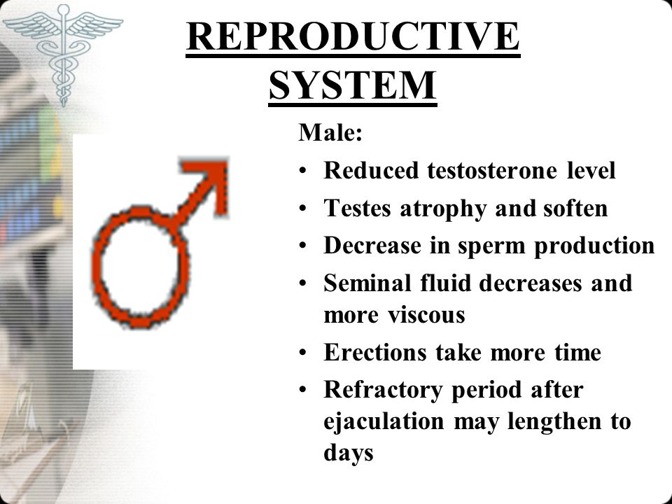 REPRODUCTIVE SYSTEM Male: Reduced testosterone level