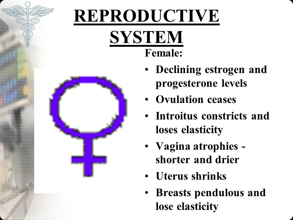 REPRODUCTIVE SYSTEM Female: Declining estrogen and progesterone levels