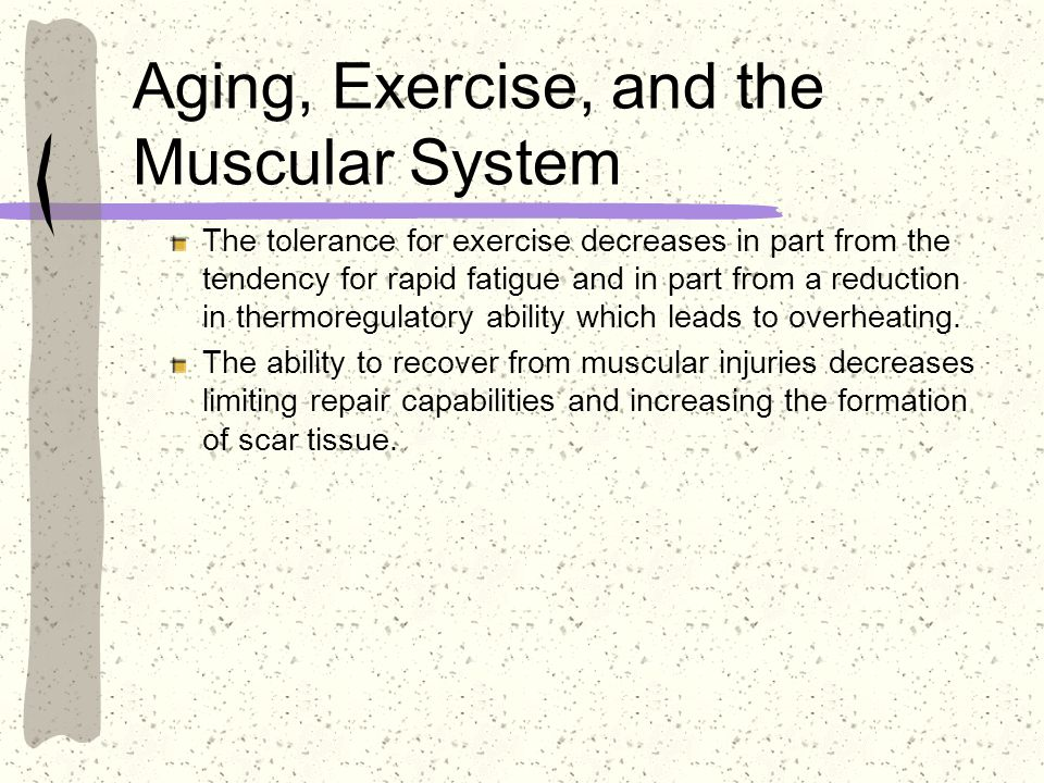 Aging, Exercise, and the Muscular System