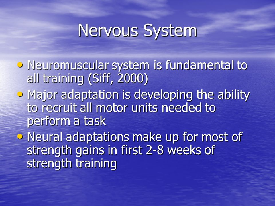 Nervous System Neuromuscular system is fundamental to all training (Siff, 2000)
