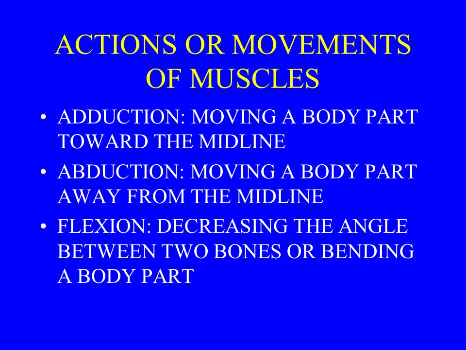 ACTIONS OR MOVEMENTS OF MUSCLES