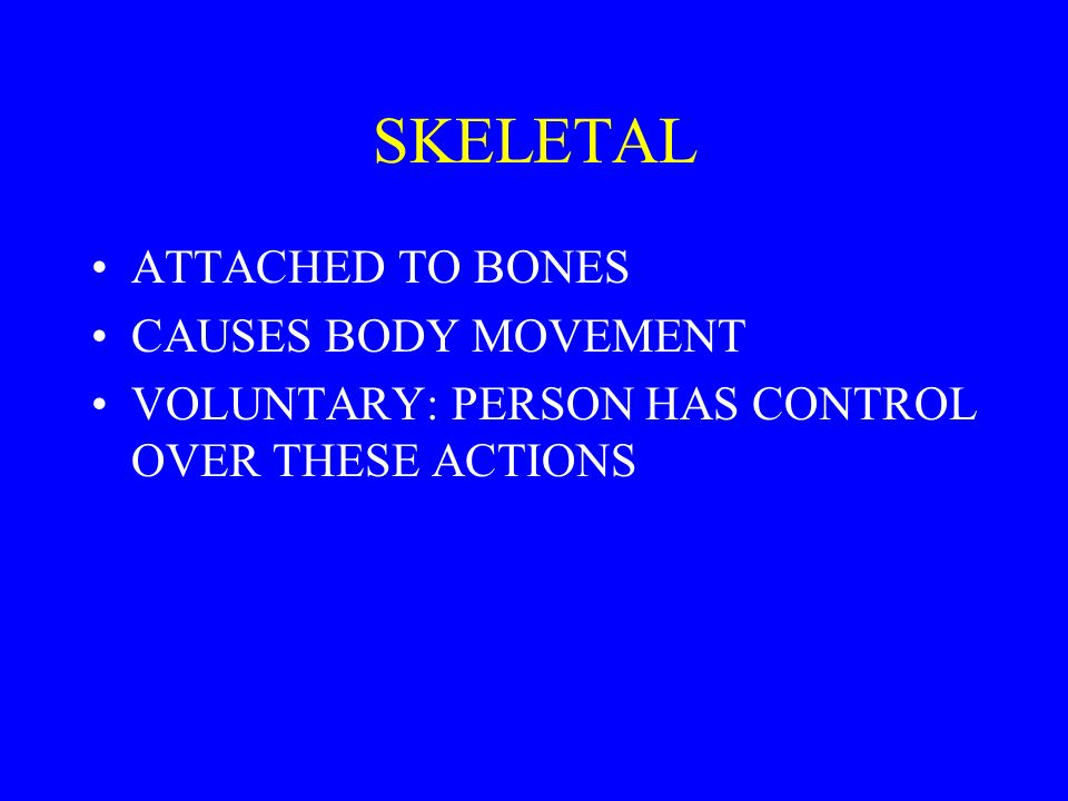 SKELETAL ATTACHED TO BONES CAUSES BODY MOVEMENT
