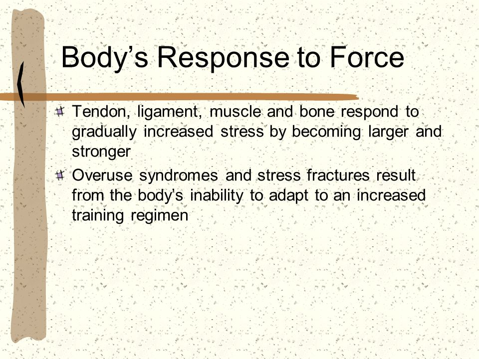 Body's Response to Force