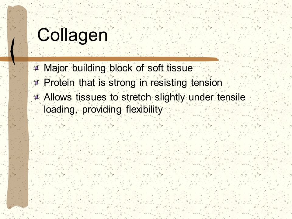 Collagen Major building block of soft tissue