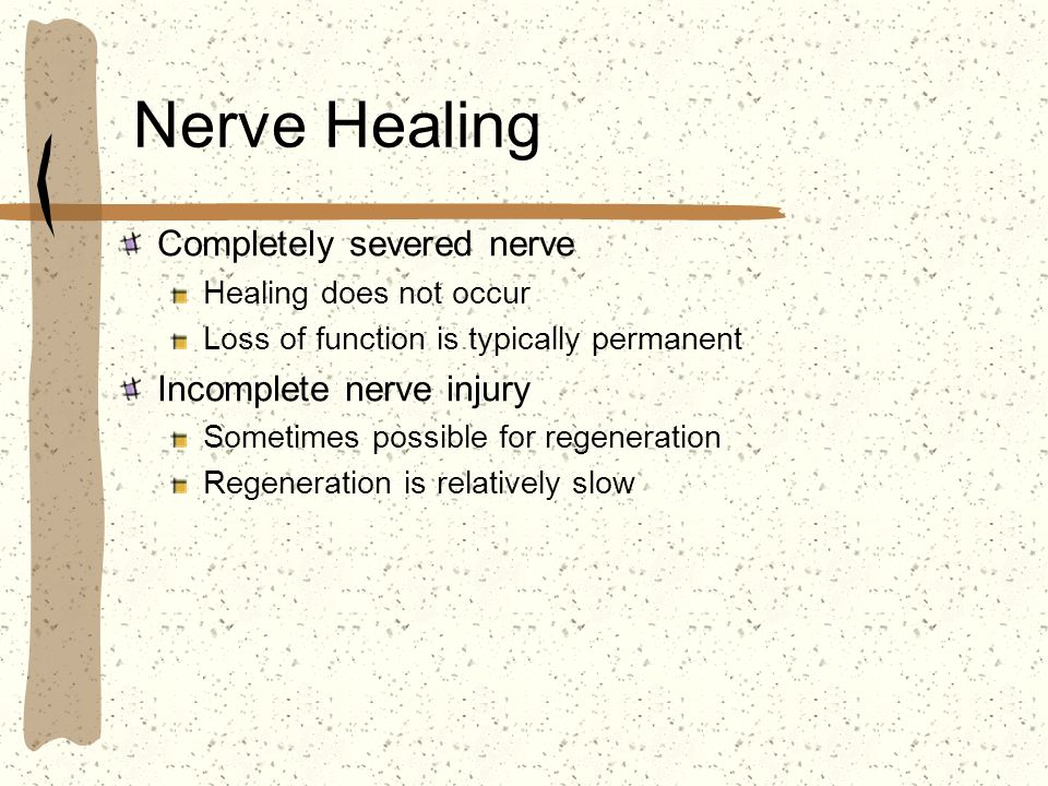 Nerve Healing Completely severed nerve Incomplete nerve injury