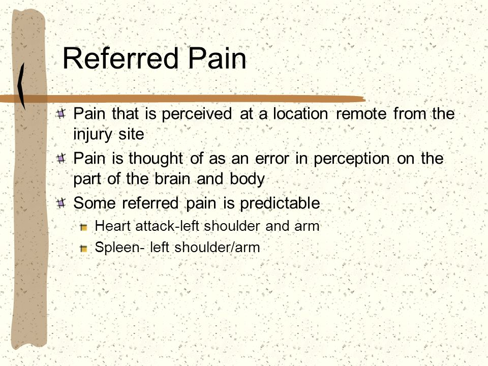 Referred Pain Pain that is perceived at a location remote from the injury site.