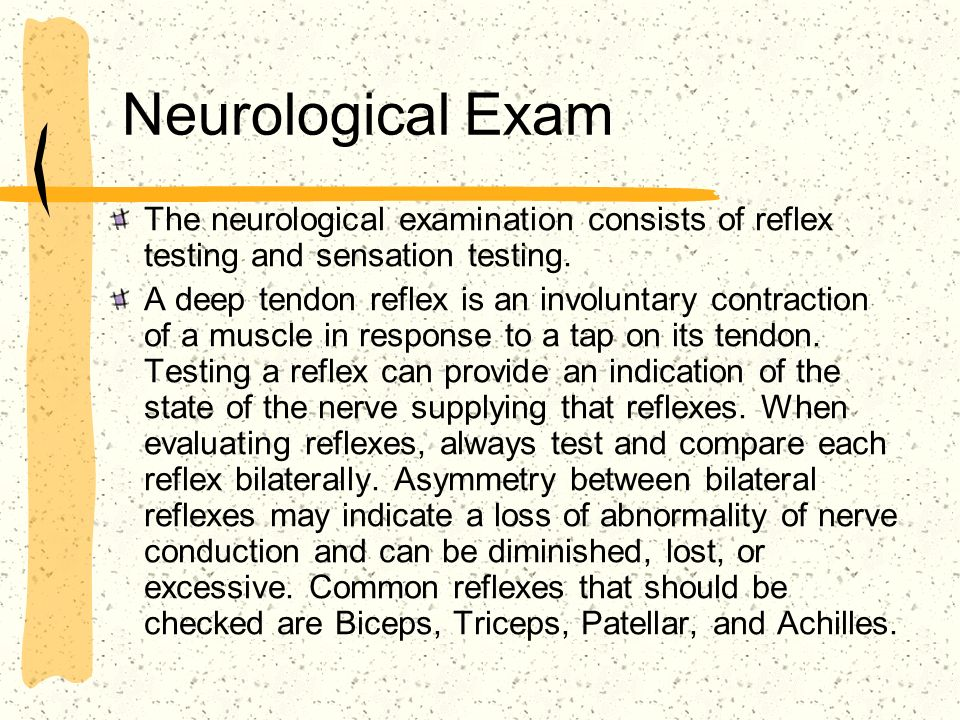 Neurological Exam The neurological examination consists of reflex testing and sensation testing.