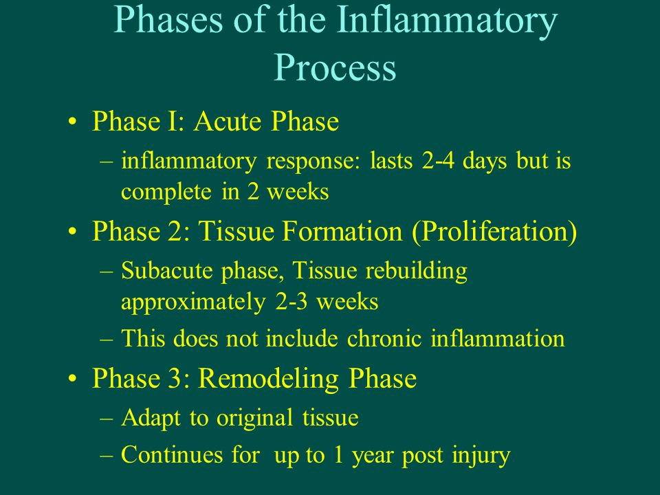 Phases of the Inflammatory Process